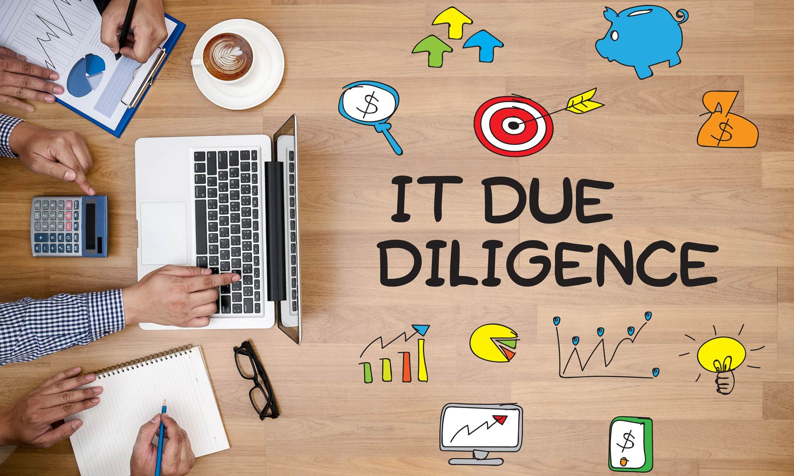 IT Due Diligence für IT Transition Migration oder Audit